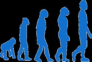 evolution-homme